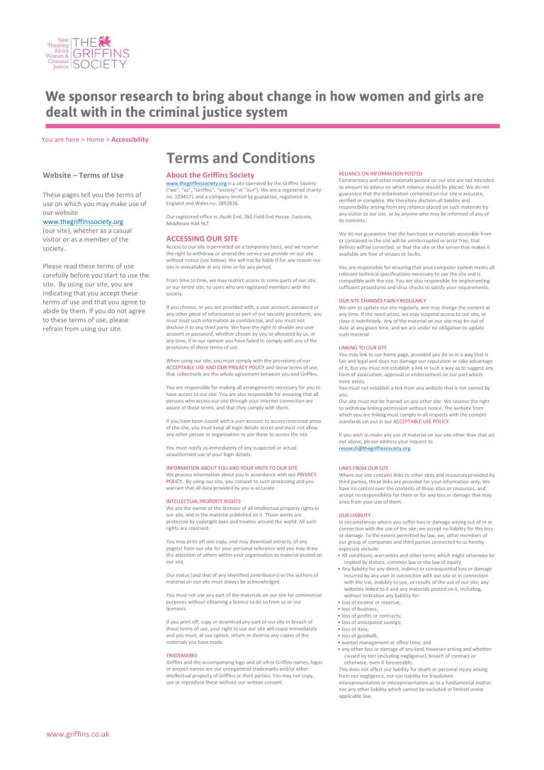 Image of Website T&Cs