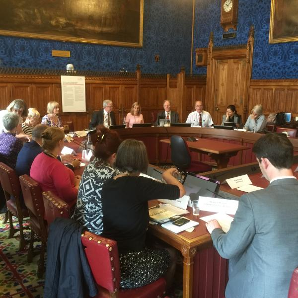 House of Lords seminar - 7.6.2016